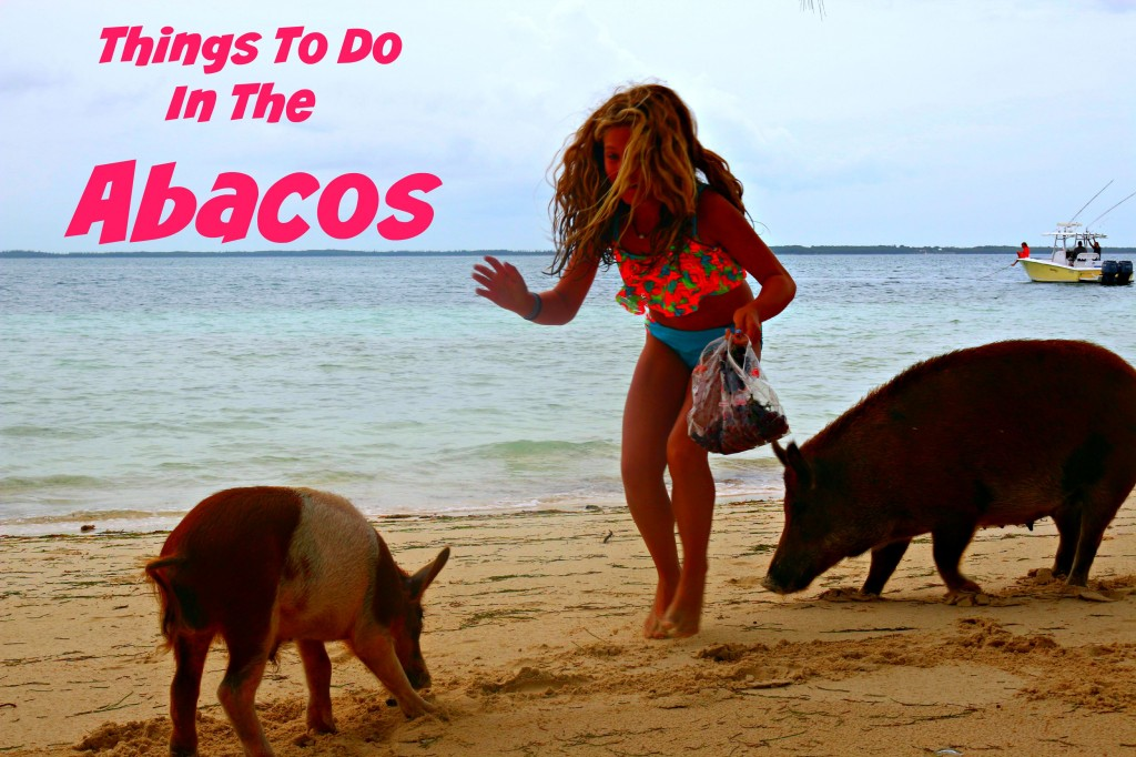 Things to Do in the Abacos